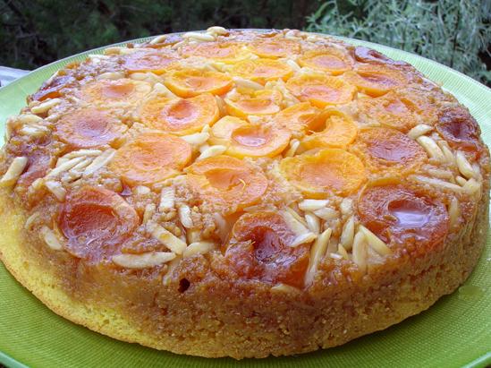 Upsidedown_apricot_cornmeal_cake172