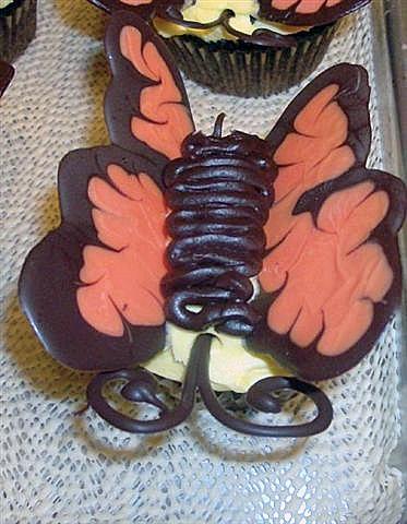 Chans_butterflies_close