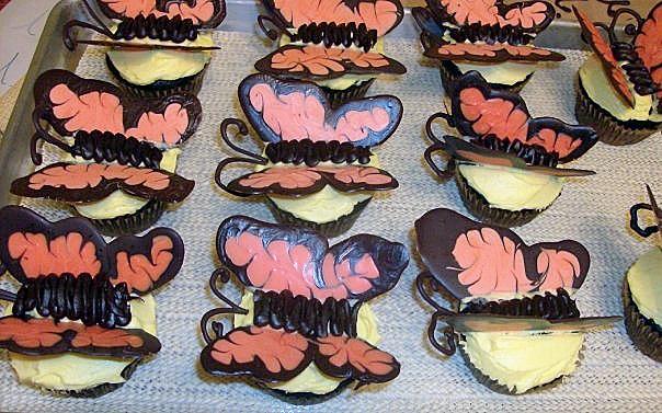 Chans_butterflies
