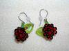 Rasberry_earrings