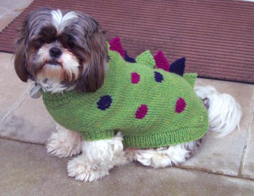 Tobys dinosaur sweater